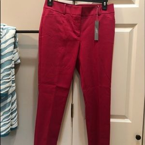 Julie Fit Loft Pants 6 Petite Brand New